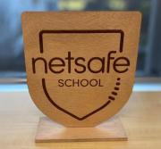Netsafe Plaque
